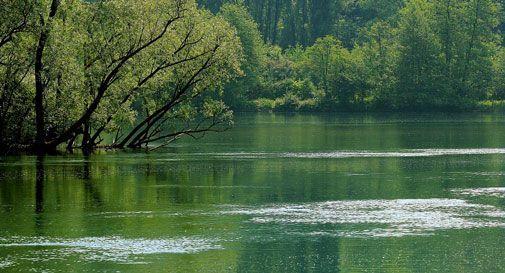 Macabra scoperta nel fiume, trovato il cadavere di una donna