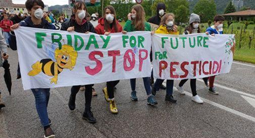 Marcia Stop Pesticidi 2019