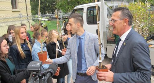 La Provincia dona 1.265 alberi agli studenti per il cambiamento climatico