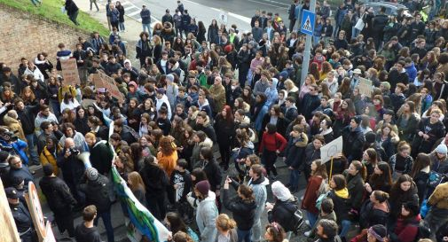 fridays for Future Treviso
