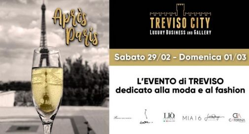 Treviso City Luxury Business and Gallery