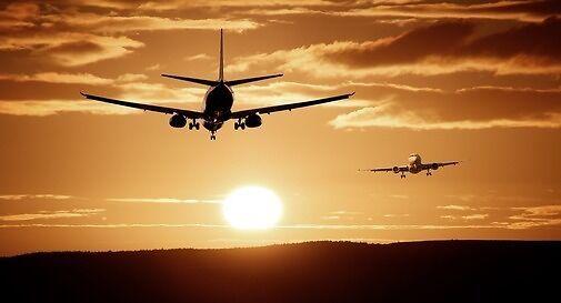 Andate e ritorni, le avventure nell'ultimo anno dei trevigiani all'estero
