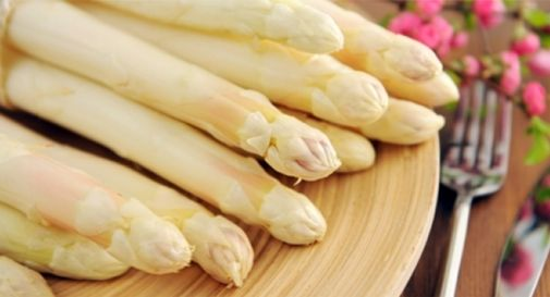 L'asparago IGP è il protagonista del concorso indetto dalla rassegna gastronomica UNPLI Treviso