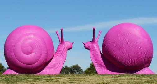 Le chiocciole giganti rosa, simbolo del movimento Cracking Art