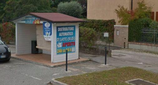 distributore del latte a Mogliano