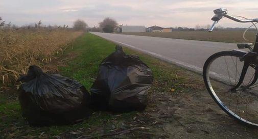 30 kg di rifiuti raccolti in soli 200 metri da un giovane ragazzo volontario in via Kennedy a Zero Branco