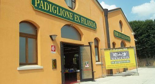 """Visitatori da tutta la regione per la mostra mercato """"Veneto in grigioverde"""""""
