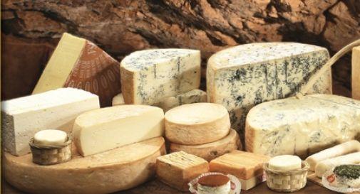 Un formaggio centenario per