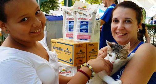 200 cani e 800 gatti cercano famiglia, un'occasione per adottarli