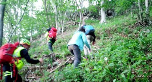Si perdono tra i boschi, recuperati dai soccorsi