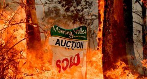 Incendi in Australia: