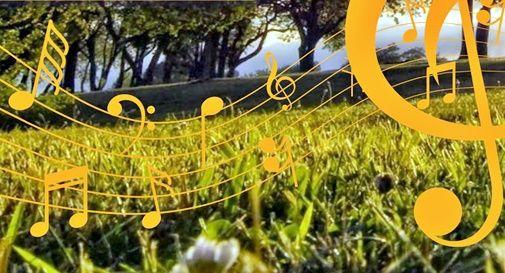 Montello in musica