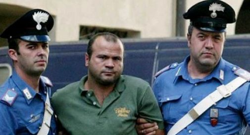 Belve di Gorgo, Stafa resta in carcere