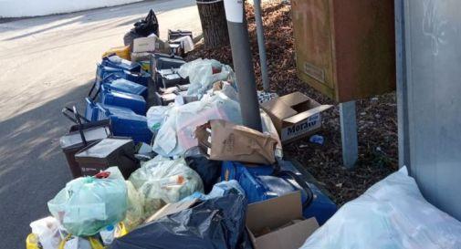 sacchi di rifiuti