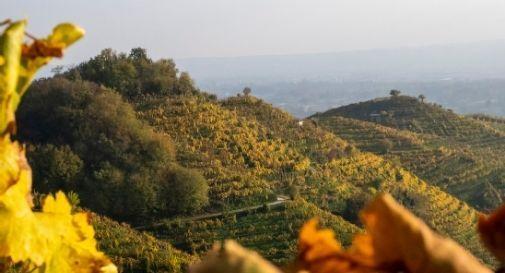 percorso storico naturalistico sulle colline prosecco Unesco