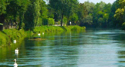Sile in sicurezza: da domenica operatori e unità cinofila vigileranno sulle acque del fiume