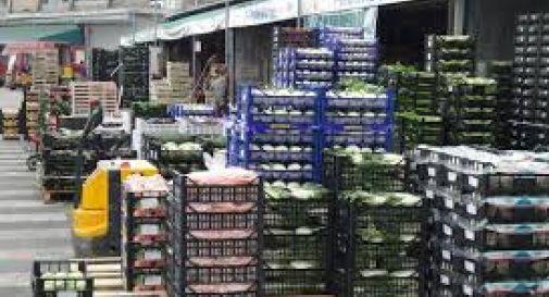 Mercato ortofrutticolo, agricoltori trevigiani in stato di mobilitazione