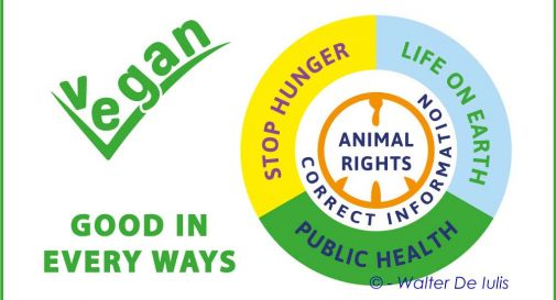 Vegan - Good in every ways