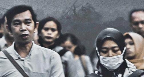 Report WWF pandemia