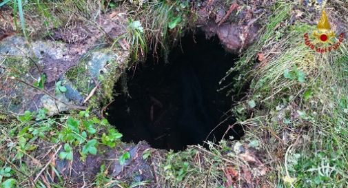 Puledra cade in un buco del terreno, salvata dai vigili del fuoco