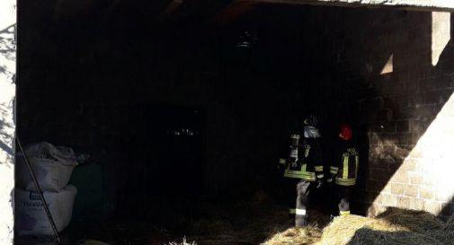 Loria, incendio alla stalla: scatta l'allarme