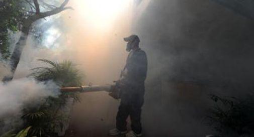 Virus Zika, allarme negli Usa: caso di infezione per via sessuale