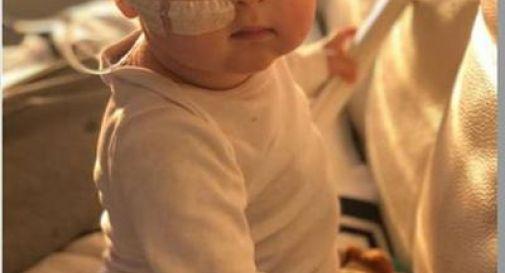 Trapianto riuscito, il piccolo Alex lascia l'ospedale