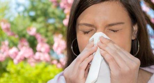 Rinite allergica 2.0, metà dei pazienti sfugge alle cure ma ora c'è l'App