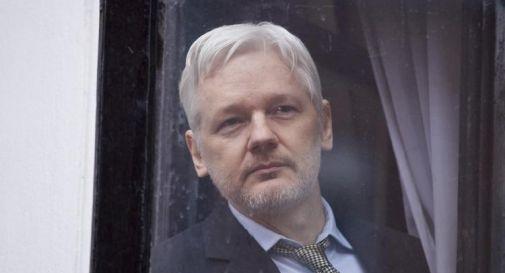 Petizione con oltre 600mila firme per liberare Assange inviata a Biden dall'Australia
