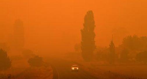 Due trevigiani nell'inferno degli incendi australiani:
