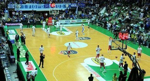 Basket Palaverde
