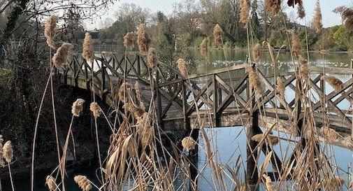 ponte Burci