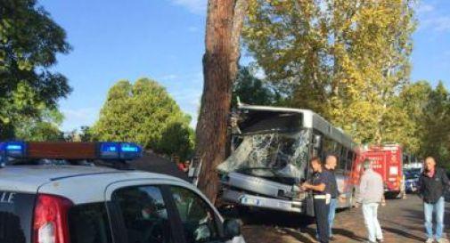 Bus contro un  albero, il bilancio è di 14 feriti
