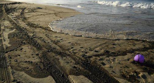 Marea nera in California, rischio disastro ecologico