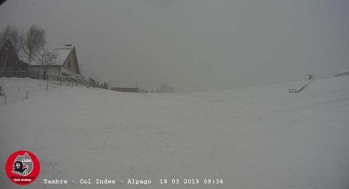 E' tornato l'inverno: neve anche in Cansiglio
