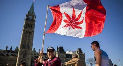 Il Canada legalizza la marijuana per scopo ricreativo