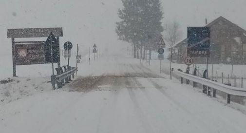 Neve in Cansiglio: in un'ora sono caduti 5 cm