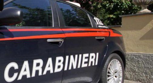 Femminicidio a Vicenza, uccisa 21enne: omicida scappa e poi si suicida