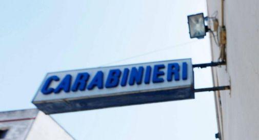 Carrara,