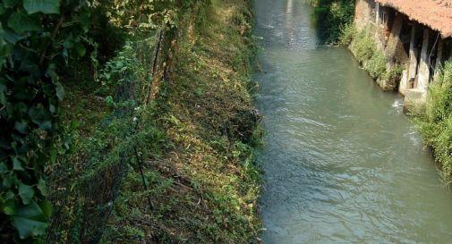 Cadavere di donna affiora da un canale nel Padovano