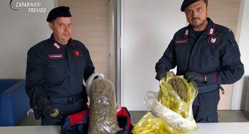 Vede l'auto dei Carabinieri e parte: in macchina le trovano oltre due chili di marijuana