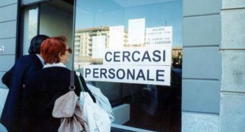Oltre 5mila offerte di lavoro dalla provincia di Treviso