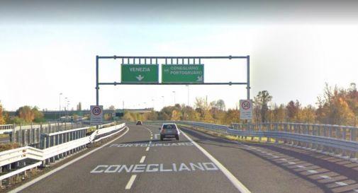 Furgone investe cervo in autostrada: paura e danni