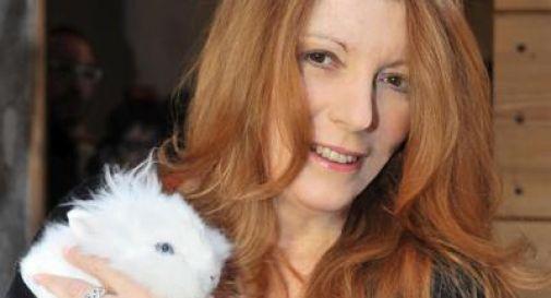 'Un coniglio per amico'