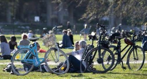 In Svezia si scongiurano gli assembramenti con la puzza: letame di polli nei parchi