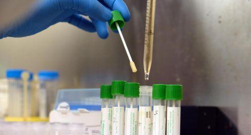 Coronavirus, 8 nuovi casi e 4 decessi in 24 ore
