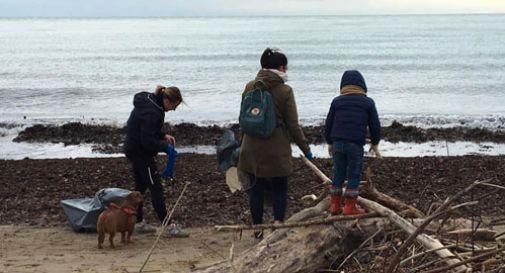 200 volontari a ripulire le spiagge, raccolti oltre 600 sacchi di rifiuti