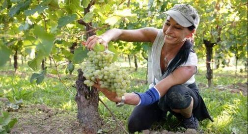 festa della donna per donne in agricoltura
