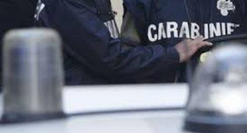Gli arriva in azienda un container con 700 Kg di cocaina, titolare chiama i carabinieri