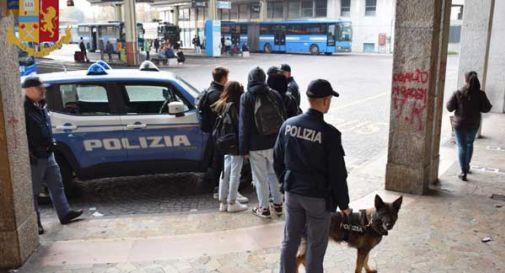 Danneggiano un autobus e si barricano all'interno alla vista della polizia: arrestati
